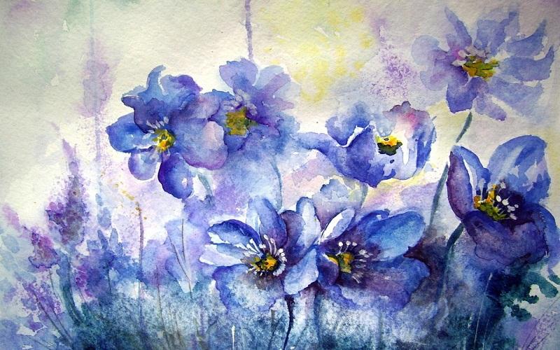 Картинки цветы нарисованные акварелью 6